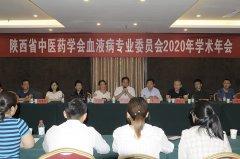 陕西省中医药学会血液病专业委员会 2020年学术年会暨省级中医药继续教育项目